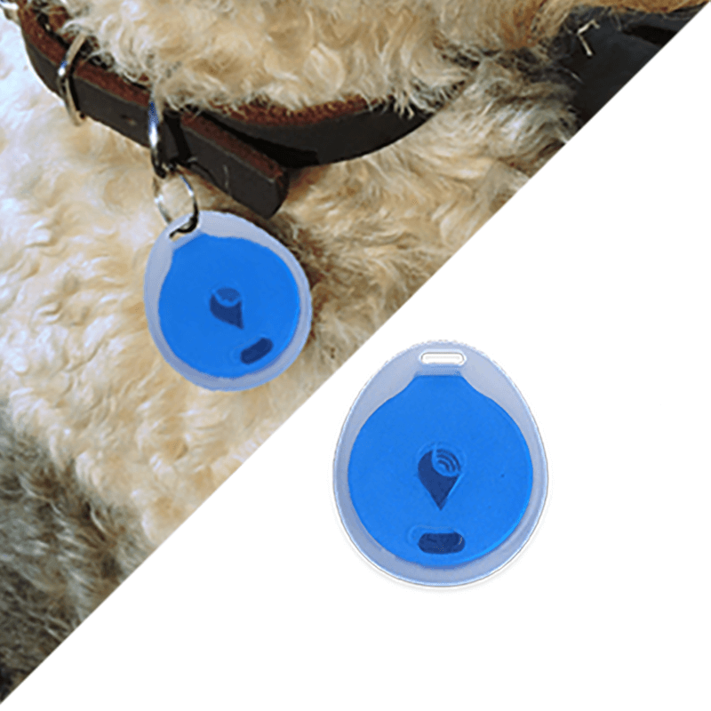 trackr-bravo-water-resistance-pet-collar-c5dca71cbf113783308f6a1b9356d14a.png