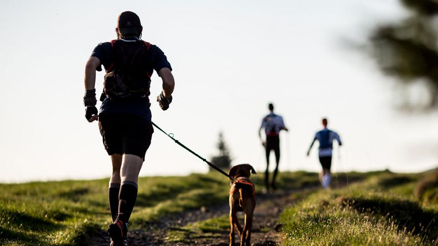1280-man-running-with-dog.jpg