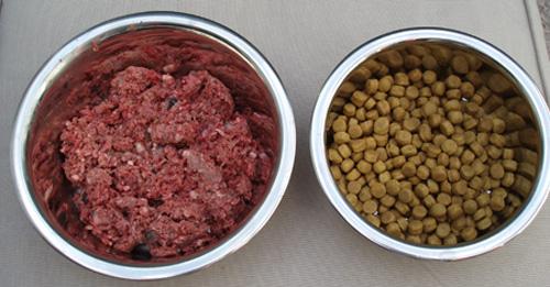 dry-dog-food-raw-meat-diet.jpg